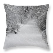Winter's Trail Throw Pillow