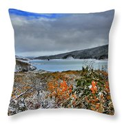 Wintry Dusting Throw Pillow
