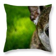 Wise Eye Throw Pillow