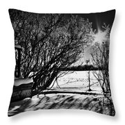 Wish Me Well Throw Pillow