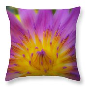 Wishing On A Star 3 Throw Pillow