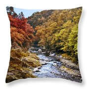 Wissahickon Creek In Fall Throw Pillow