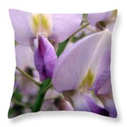 Wisteria Flowers Throw Pillow