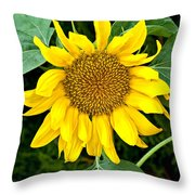 Wistful One Throw Pillow