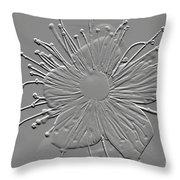 Witch Hazel Blossom Throw Pillow
