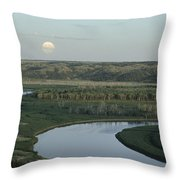 With A Full Moon Rising, The Meandering Throw Pillow