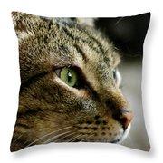 With Intense Focus Throw Pillow