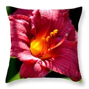 With The Finger Of God Throw Pillow