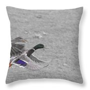 With The Finishing Line In Sight  Throw Pillow