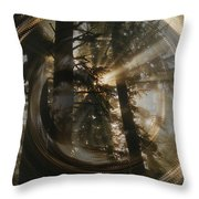 Within Whorls Of Beauty Throw Pillow
