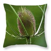 Without Petals Throw Pillow