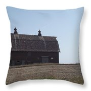 Withstanding Time Throw Pillow