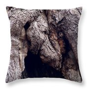 Wolf And The Eagle Throw Pillow