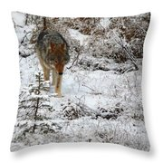 Wolf On The Prowl Throw Pillow