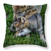 Wolf Play Throw Pillow
