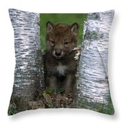 Wolf Pup Playing Peekaboo Throw Pillow