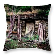 Wolf's Lair Throw Pillow