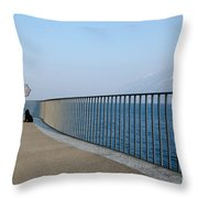 Woman And Her Dog On The Path Throw Pillow