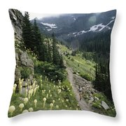 Woman Hiking On Sperry Chalet Trail Throw Pillow