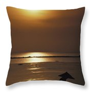 Woman In Conical Hat Collecting Shell Throw Pillow