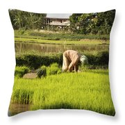 Woman Planting Rice Throw Pillow