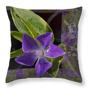 Wonderful Works Throw Pillow