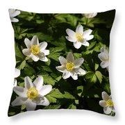 Wood Anemone Throw Pillow