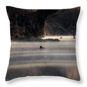 Wood Duck - On The Scenic Sucarnoochee River Throw Pillow