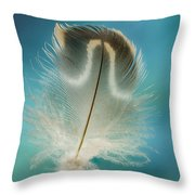 Wood Duck Part Throw Pillow