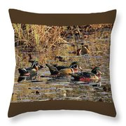 Wood Duck Trio Throw Pillow