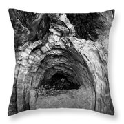 Wood You Smile  Throw Pillow