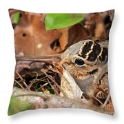 Woodcock Nesting Side View Throw Pillow