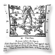 Woodcut, 1750 Throw Pillow by Science Source