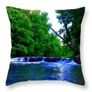 Wooded Waterfall Throw Pillow by Bill Cannon