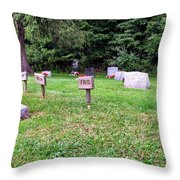 Wooden Plaquards Throw Pillow