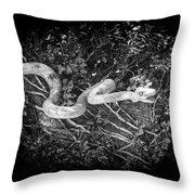 Wooden Snake Throw Pillow