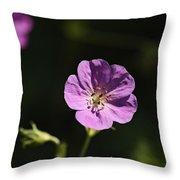 Woodland Blooms Throw Pillow