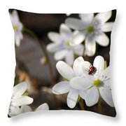 Woodland Flora And Friend Throw Pillow