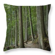 Woodland Forest Path Throw Pillow
