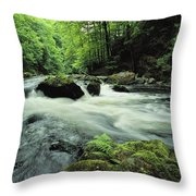 Woodland Stream And Rapids, Time Throw Pillow