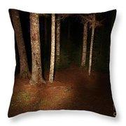 Woods At Night Throw Pillow