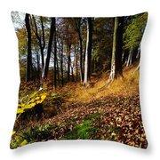 Woods During Autumn Throw Pillow