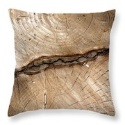 Woodwork Design Throw Pillow
