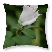 World War II Memorial Rose Throw Pillow