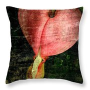 Worn Heart  Throw Pillow