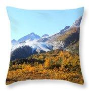 Worthington Glacier Throw Pillow