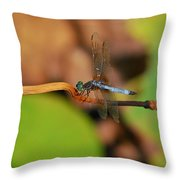 Wounded Wing Throw Pillow