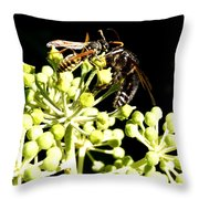 Wrangling Wasps Throw Pillow