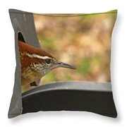 Wren Peeking Out Throw Pillow