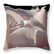 Wwii Memorial Rose Throw Pillow